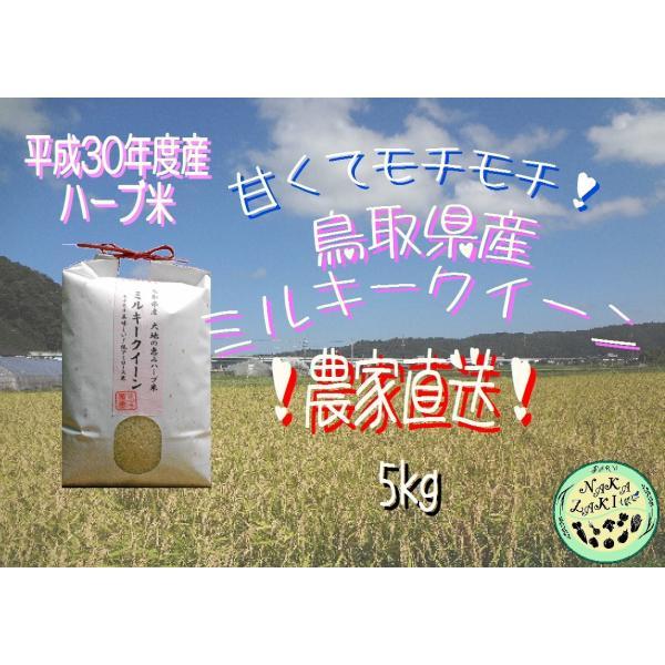 【低温熟成】平成30年度産 鳥取県産 ハーブ米 ミルキークイーン 精米5kg|nakazaki-farm