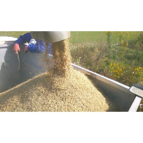 【低温熟成】平成30年度産 鳥取県産 ハーブ米 ミルキークイーン 精米5kg|nakazaki-farm|07