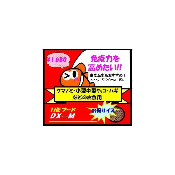 【生麦オリジナル】THEフードDX−Mサイズ150g|namamugi|02