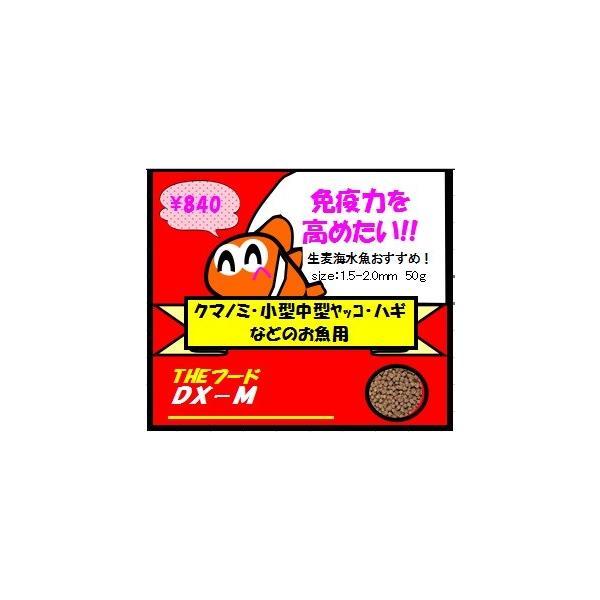 【生麦オリジナル】THEフードDX−Mサイズ50g|namamugi|02