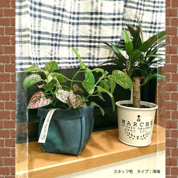 鉢カバー ガーデニング 園芸用雑貨 uchi-green 麻の葉|namustore|07
