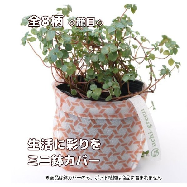 おしゃれな鉢カバー ガーデニング  プチギフト uchi-green 全8柄|namustore|13