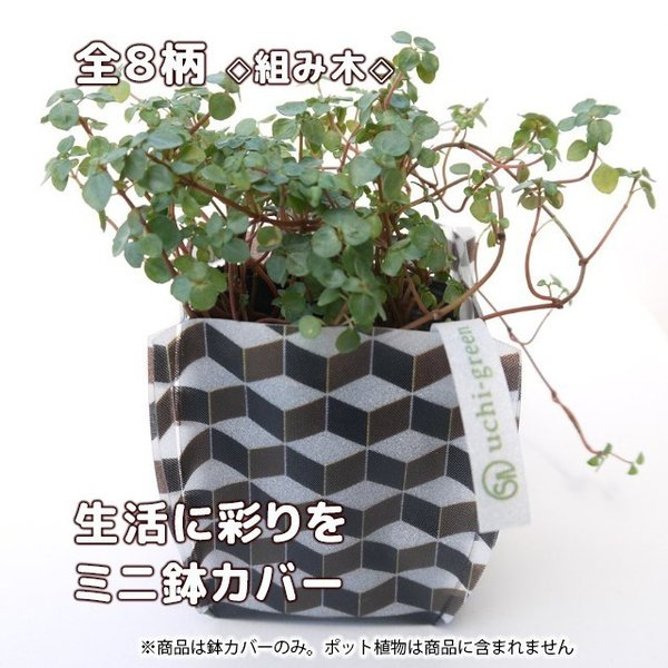 おしゃれな鉢カバー ガーデニング  プチギフト uchi-green 全8柄|namustore|14