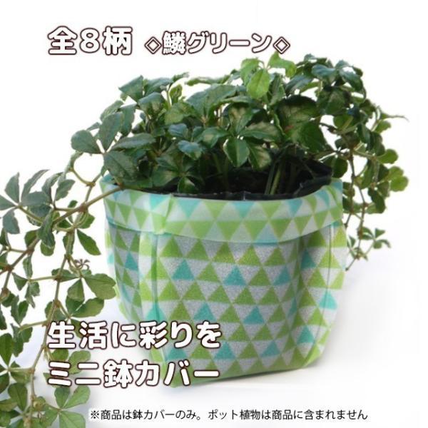 おしゃれな鉢カバー ガーデニング  プチギフト uchi-green 全8柄|namustore|16