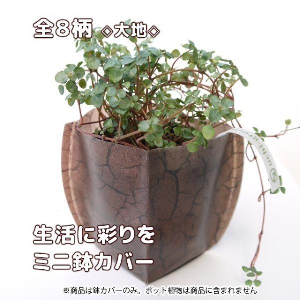 おしゃれな鉢カバー ガーデニング  プチギフト uchi-green 全8柄|namustore|10