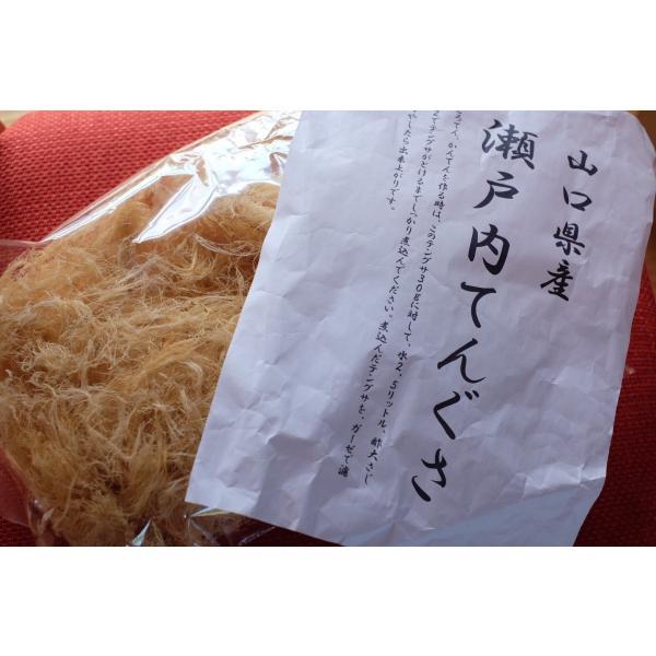 [全国送料無料]山口県産 テングサ 100g   海藻 天草 てんぐさ 寒天 nanairohiroba 03