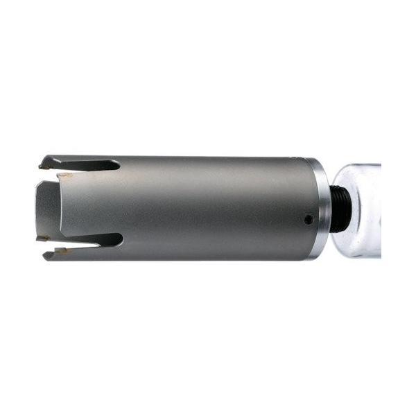 2020モデル ハウスB.M サイディングウッドコアボディ65mm セール価格 SWB65
