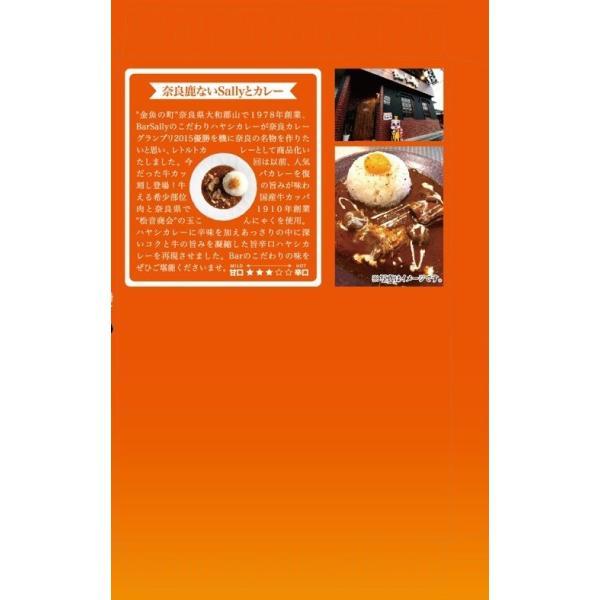 奈良鹿ないカレースパイシー|nara-izumiya|02