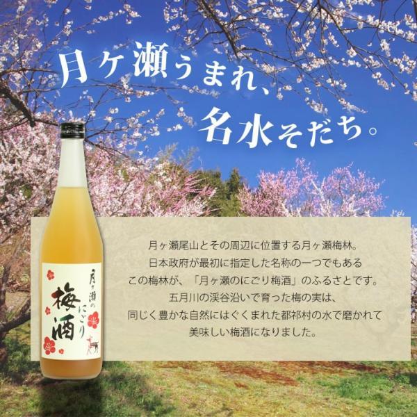梅酒 月ヶ瀬のにごり梅酒(720ml)八木酒造|nara-izumiya|02