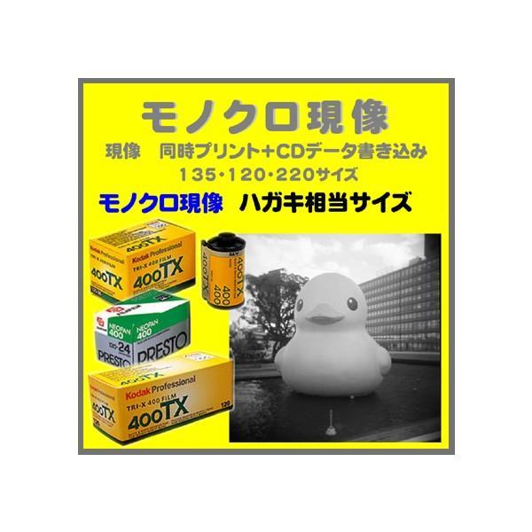 モノクロフィルム モノクロ現像  同時プリント ハガキサイズ+CDデータ書き込み  FUJI  NEOPAN ACROS PRESTO Kodak TRY-X