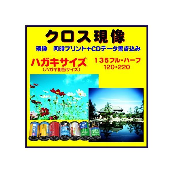 クロス現像 同時プリント+CDデータ書き込み FUJI  KODAK AGFA LOMO リバーサルフィルムから→C−41現像  1本から受付