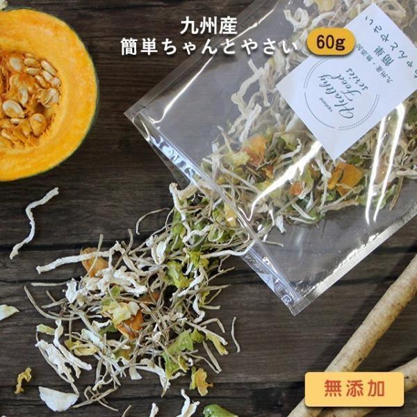 60g 九州産 乾燥野菜(玉ねぎ、大根、ごぼう、キャベツ、カボチャ) 国産 簡単ちゃんとやさい 味噌汁の具 メール便A TSG