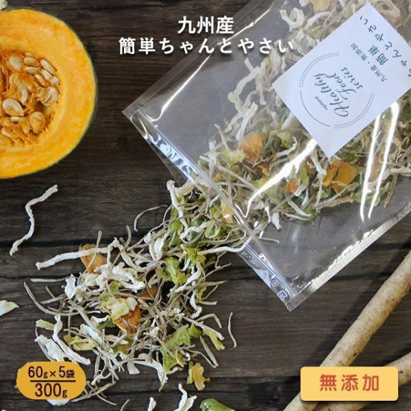 300g 5袋セット 九州産 乾燥野菜(玉ねぎ、大根、ごぼう、キャベツ、カボチャ) 国産 簡単ちゃんとやさい まとめ買い 宅配便A TSG