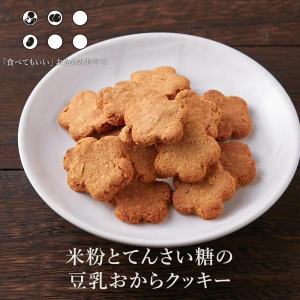 米粉とてんさい糖の豆乳おからクッキー 500g 送料無料 訳あり スイーツ 置き換え 健康 お菓子 メール便A TSG TN ns8