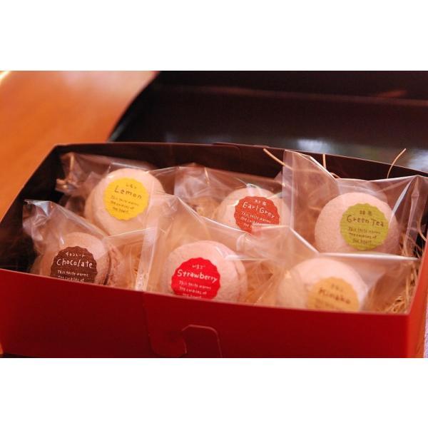 ころころマカロン 6個入り(卵・乳使用) ギフト お菓子 クリスマス プレゼント|natural-fukurou|05
