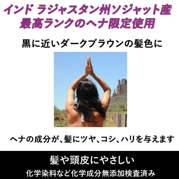 ラジャスタンヘナ ダークブラウン 濃い黒茶色 100g 白髪染め ヘナ専用シャンプー付|naturalbalance|03