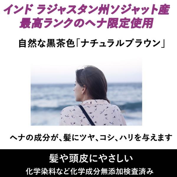 ラジャスタン ヘナ ナチュラルブラウン 自然な黒茶色 100g 白髪染め ヘナ専用シャンプー付き|naturalbalance|03