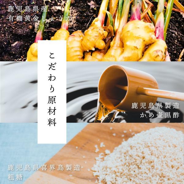 黄金しょうが シロップ 200ml 鹿児島県産 有機 生姜 使用 ジンジャーシロップ|naturalhills|06