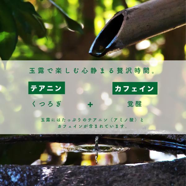 玉露 粉末 緑茶 日本茶 80g 国産 鹿児島県産 オーガニック 有機栽培|naturalhills|03