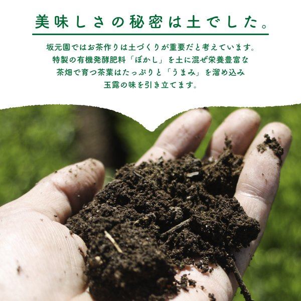 玉露 粉末 緑茶 日本茶 80g 国産 鹿児島県産 オーガニック 有機栽培|naturalhills|06