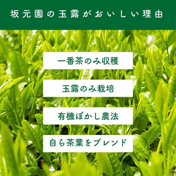 玉露 粉末 緑茶 日本茶 80g 国産 鹿児島県産 オーガニック 有機栽培|naturalhills|07