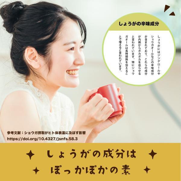 黄金しょうが パウダー 70g 鹿児島県産 オーガニック 国産 有機 黄金生姜 粉末 naturalhills 05