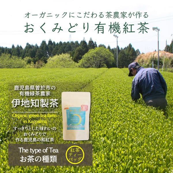 紅茶 和紅茶 ティーバッグ 2.5gx12 有機 オーガニック 鹿児島県産 有機おくみどり紅茶|naturalhills