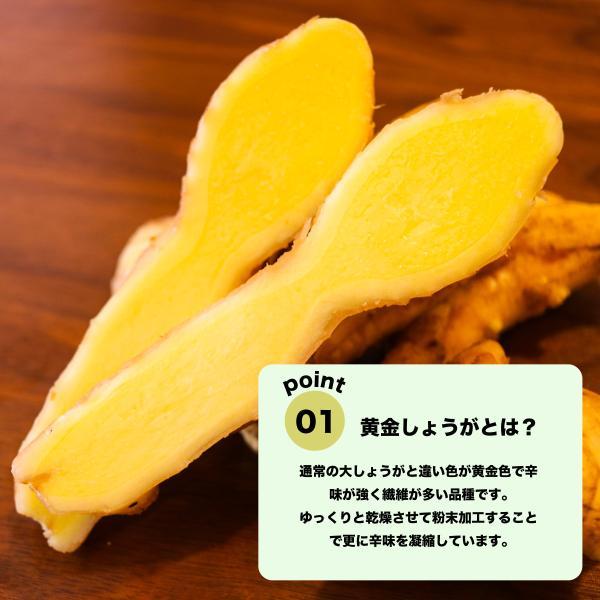 黄金しょうが パウダー 70g 鹿児島県産 国産 黄金生姜 粉末(非有機)|naturalhills|07
