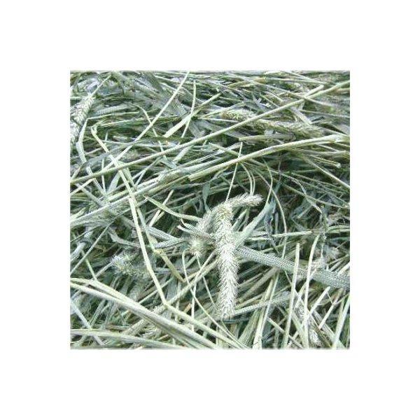 アメリカ産1番刈り一番刈りチモシーシングルプレス1kgx3袋うさぎモルモット餌/エサフードチモシーウサギエサ
