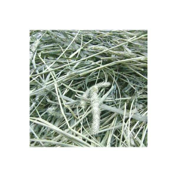 チモシー  アメリカ産1番刈りチモシーシングルプレス1kgx5袋