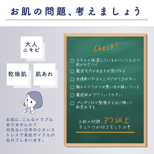 スキンケアクリーム アクネスラボ ACNES LABO 薬用ニキビケア 保湿ジェルクリーム 60g 医薬部外品|naturelab-store|05