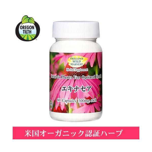 【新デザイン】 エキナセア  60粒 ( Echinacea )(オレゴンズワイルドハーベスト) (クーポン利用可)|natures