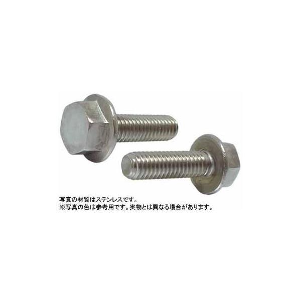 フランジボルト(2種(輸入 ステンレス 生地  6 X 10 【パック商品 15本入】