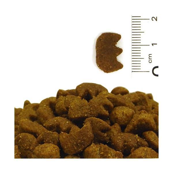 ザナベレ デンタル 400g / 口腔ケア 猫用 栄養食|nekobatake|02