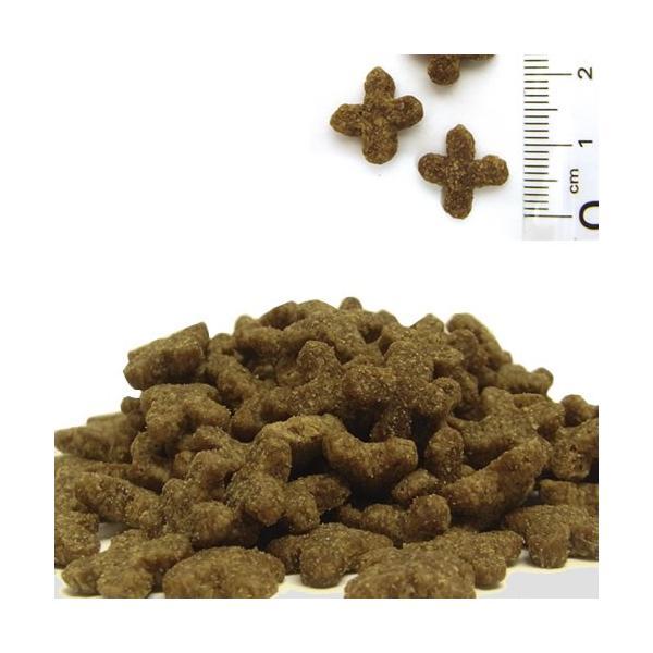 ソリッドゴールド カッツフラッケン 1.8kg 正規品 キャットフード 総合栄養食|nekobatake|02