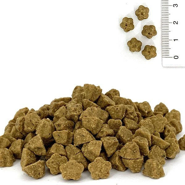 ロータス キャット ダックレシピ 400g / 猫用総合栄養食 グレインフリー|nekobatake|02