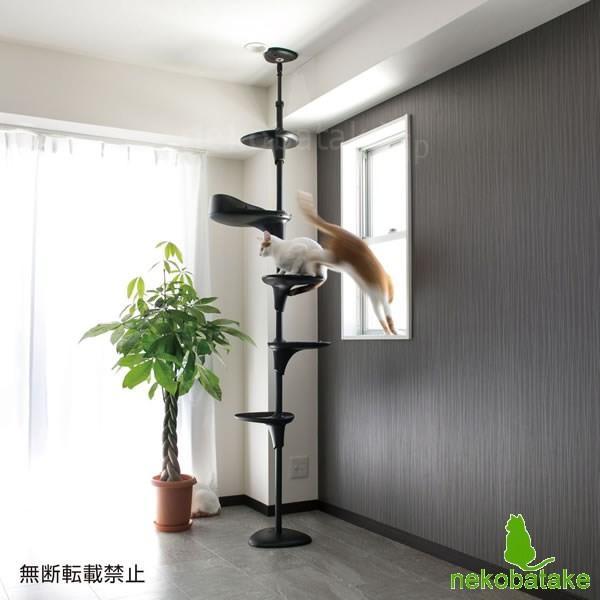 OPPO CatForest [キャットフォレスト] ブラック / 猫用タワー テラモト(取寄せ)|nekobatake|04