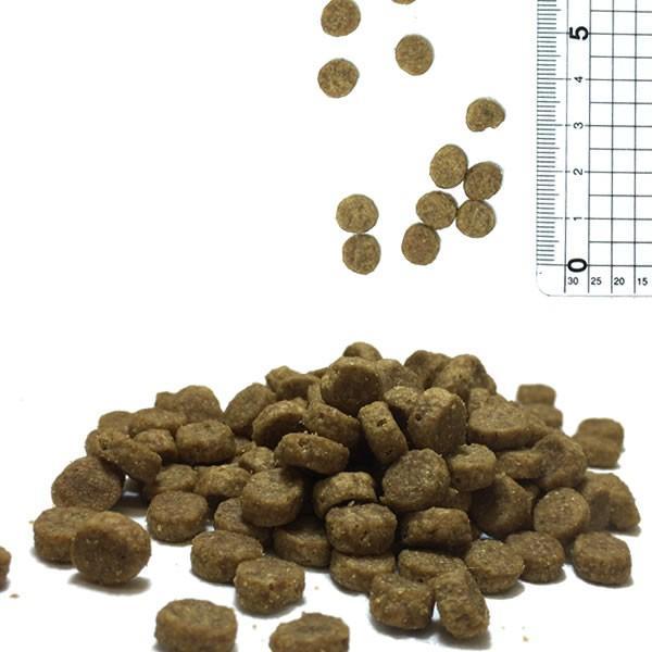 ブリスミックス 猫用 500g / キャットフード 総合栄養食 口腔ケア|nekobatake|02