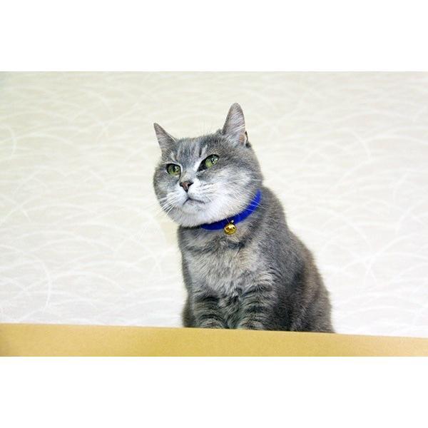 ニャンダフルシェルフ コンパクト(シンプルタイプ) / 猫用 据え置き型キャットタワー ECO おしゃれデザイン 日本製 ダンボール製|nekodan|02