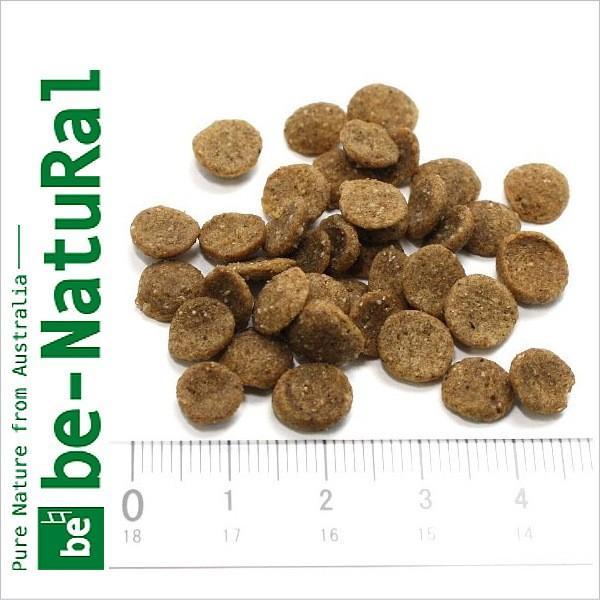 最短賞味2020.10.14・リニューアル品ビィナチュラル ルート・ブレンド 小粒 2.8kg 全年齢ドッグフード be-NatuRal 正規品be53038 nekokin 02