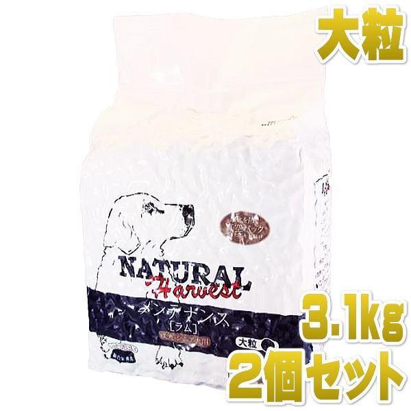 最短賞味2021.5・ナチュラルハーベスト メンテナンス 大粒 3.1kg×2袋成犬シニア犬対応ドライフード Natural Harvest 正規品 nh06472s2|nekokin