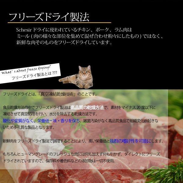 最短賞味2020.1.29・シシア 猫 ドライ ヘアボール(チキン)1.6kg(400g×4) scc716p毛玉ケア キャットフード Schesir 正規品 nekokin 02