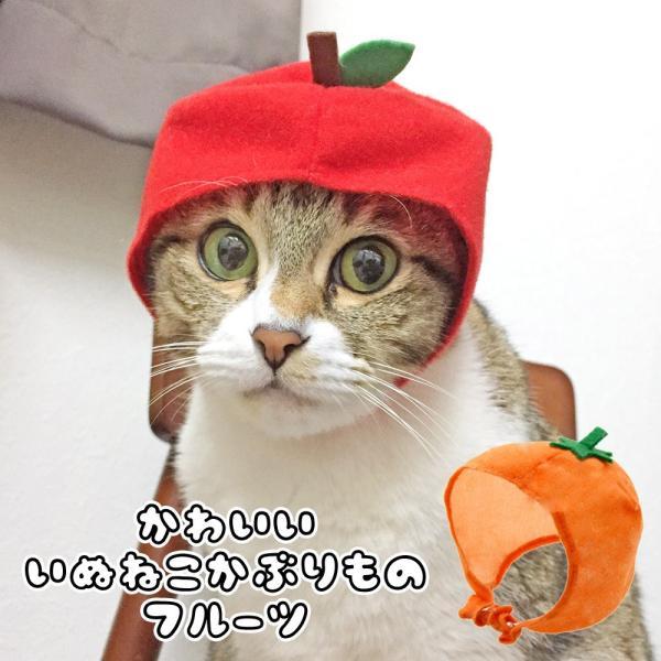 猫ちゃん専用かぶりもの フルーツ・りんご|nekote-shop