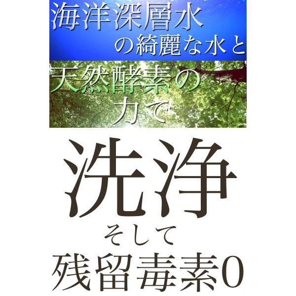犬 シャンプー Neugier ケアシリーズ シャンプー 500ml / Neugier Body Soap 500ml|nekotsume|04