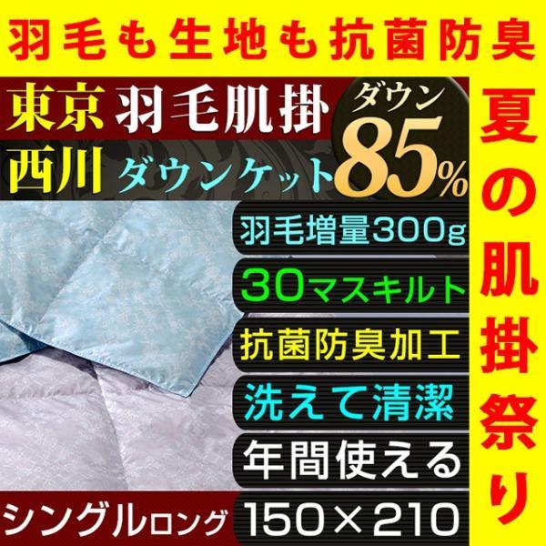 肌掛け布団 夏 ダウンケット シングル 西川 洗える 羽毛 ダウン 85% 300g入り  抗菌 防臭 東京西川|nemurinokamisama