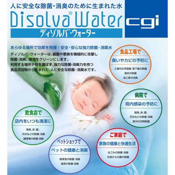次亜塩素酸水 ディゾルバウォーター 20l 箱 容器 O157 除菌 消臭 赤ちゃん ペットに 送料無料 nenrin 02