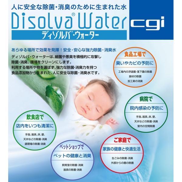 次亜塩素酸水 ディゾルバウォーター 詰替パウチ500ml(最大2L分) O157 除菌 消臭 赤ちゃん ペットに|nenrin|02