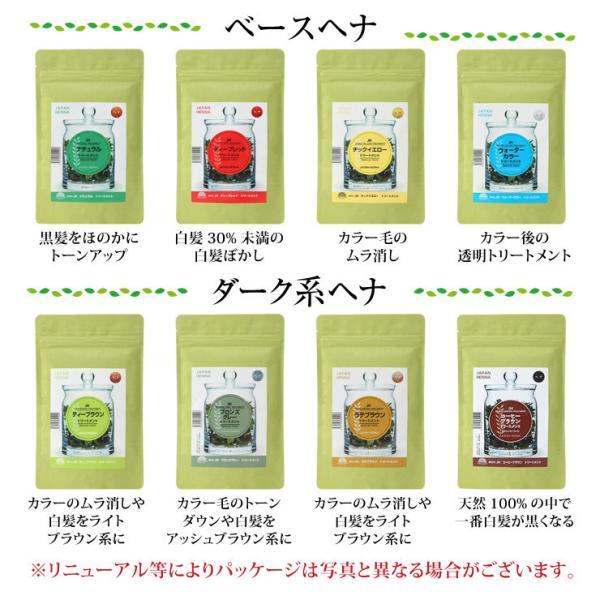 ジャパンヘナ 100g 10色 白髪染め オーガニック カラー トリートメント(メール便送料無料)|nenrin|02