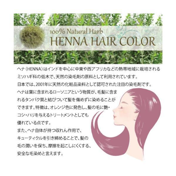 ジャパンヘナ 100g 10色 白髪染め オーガニック カラー トリートメント(メール便送料無料)|nenrin|03