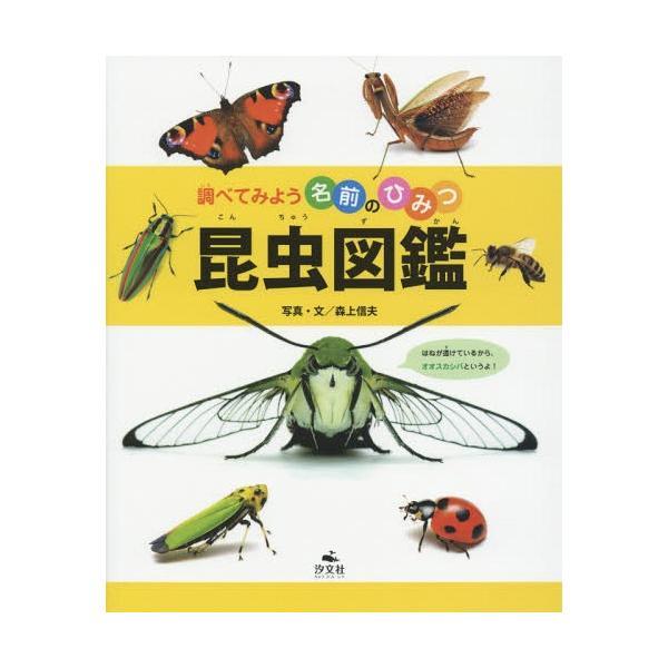 [本/雑誌]/昆虫図鑑 (調べてみよう名前のひみつ)/森上信夫/写真・文